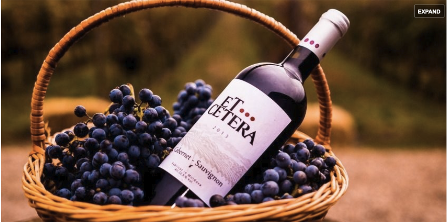 moldova-wine_et-cetera_winery-4.png